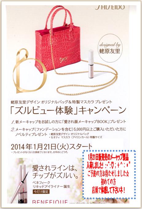 ズルビュー体験キャンペーン 1月21日発売 蛯原友里デザイン オリジナルバック&特製マスカラ プレゼント