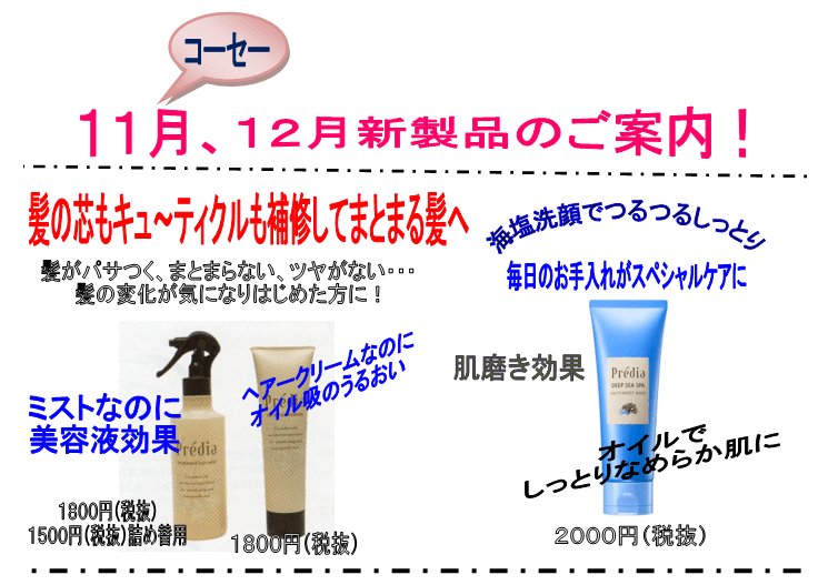 11月、12月新製品のご案内!